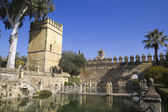 Alcazar de los Reyes Cristianos — Stock Photo