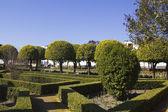 Gardens of the alcazar in Cordoba — Stock Photo