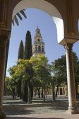 Cathedral of Cordoba — Stock Photo