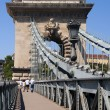 The famous Chain Bridge across the Danube in Budapest, Hungary, Europe — Stock Photo