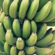 Bunch of young green bananas — Stock Photo