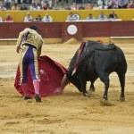 Bulllfighter in action. — Stock Photo #11030925