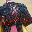Detail of the jacket of the bullfighter. — Stock Photo #11031404