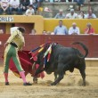 Stock Photo: Bullfighter and bull.