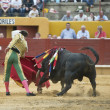 Bullfighter and bull. — Stock Photo