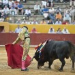 Bullfighter at work. — Stock Photo #11031448