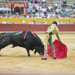 Stock Photo: Typical bullfight.