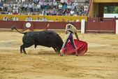 Torero en la arena — Foto de Stock