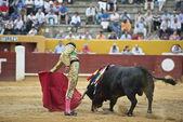 Bullfighter at work. — Stock Photo