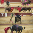 Collage about bullfighting. — Stock Photo #11742719