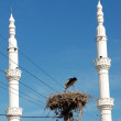 Stork in the nest between two minarets — Stock Photo
