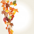 Colorful autumn leaves illustration — 图库矢量图片