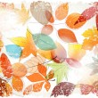 Vintage colorful autumn leaves illustration — Stock Vector