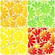 Set of four seamless citrus fruit background — 图库矢量图片