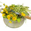 Stock Photo: Garden weeds are dandelions