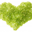 Gentle green heart — Stock Photo