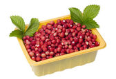 Forest strawberries in container — Stock Photo