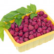 Raspberries in yellow plastic container — Foto de stock #11754098