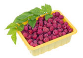 Raspberries in a yellow plastic container — Foto de Stock