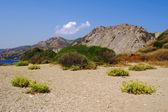 Rock ile kumsalda adası zakynthos — Stok fotoğraf