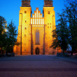 Archicathedral Basilica in Poznan by night — Stock Photo