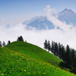 Swiss mountains in morning — Stock Photo #11131430