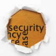 Security — Stock Photo #11356181