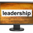 Leadership — Foto de stock #11926246