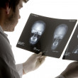 Doctor who analyzes the X-rays of a skull - Stock Photo