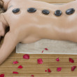 Attractive woman getting spa treatment - Stock Photo