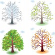 Tree in the seasons - Stock Vector