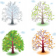 Tree in the seasons — Stock Vector #11179773