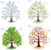 Tree in the seasons — Stock Vector