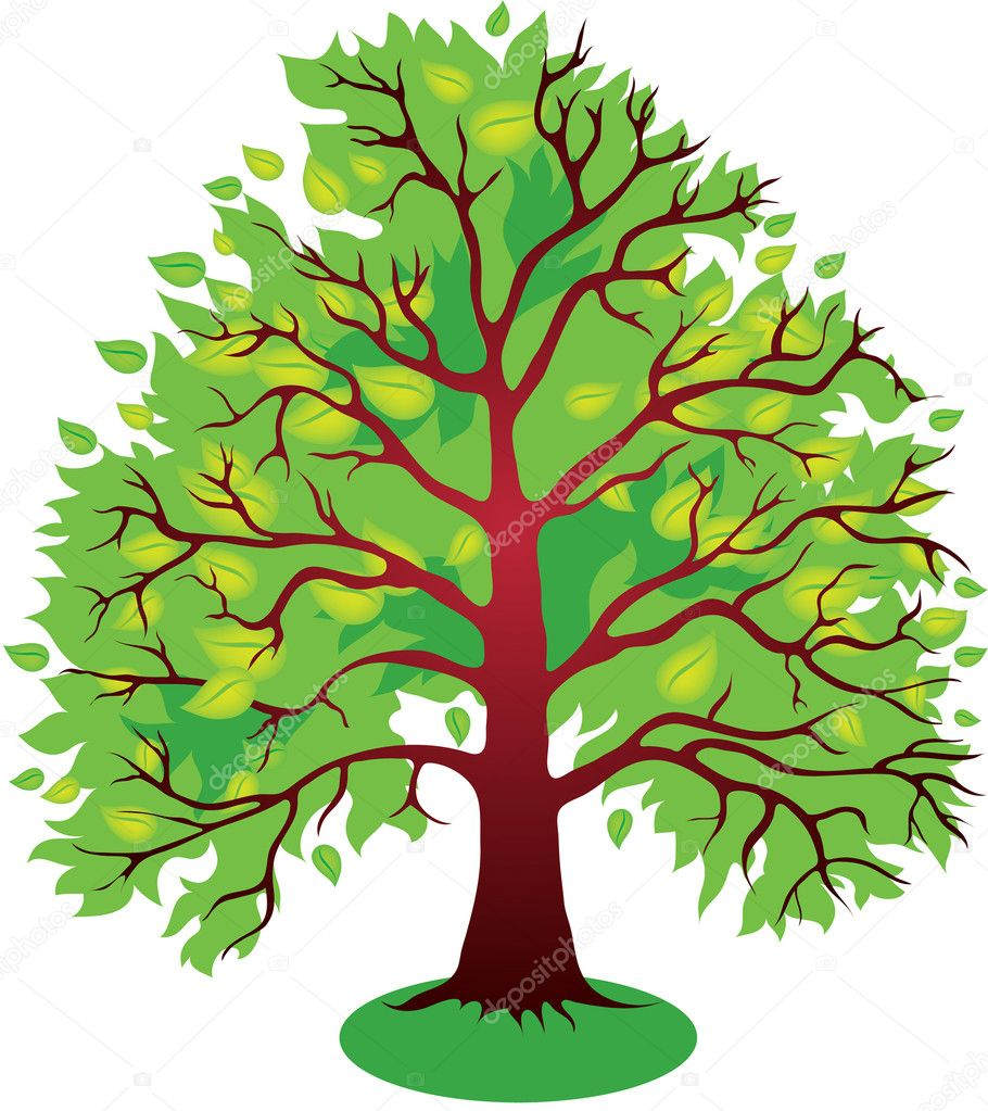 Vector illustrations of green leaves tree  Stock Vector #11179766