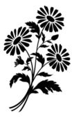 Chamomile flowers, silhouettes — Stock Photo