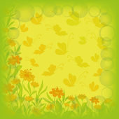 Background, flowers and butterflies — Stock Photo