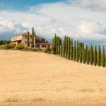 Постер, плакат: Tuscany rural landscape