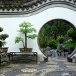 Chinese garden — Stock Photo #12092924