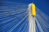 Suspension bridge with cables — Stock Photo