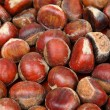 Chestnut — Stock Photo #12193127