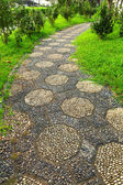 Path in chinese garden — Stock Photo