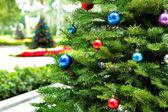 Christmas tree in garden — Stock Photo