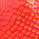 macro de textura fresa — Foto de Stock