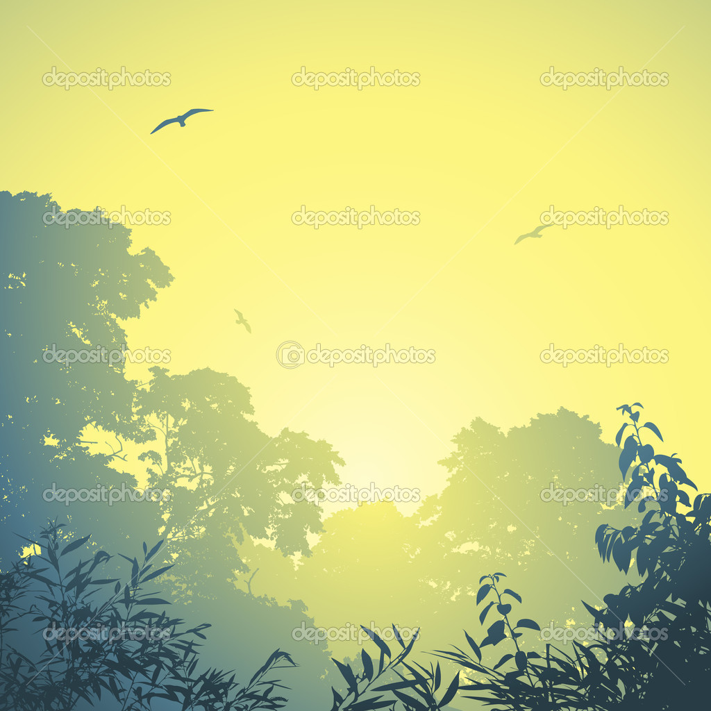A Misty Forest Landscape with Trees and Sunset, Sunrise — Stockvectorbeeld #11791880