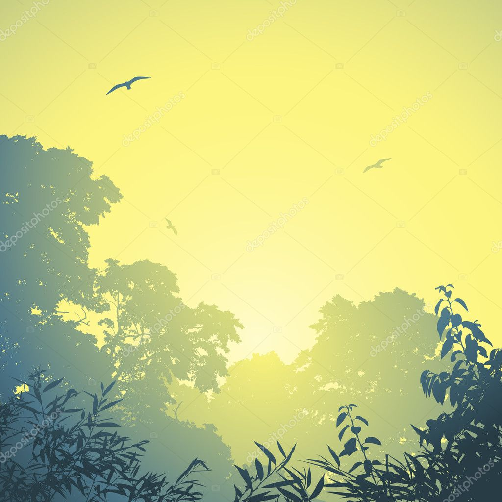 A Misty Forest Landscape with Trees and Sunset, Sunrise — Stock vektor #11791880