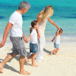 Royalty-Free Stock Photo: Beautiful family of four walking on the beach