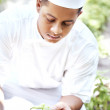 Royalty-Free Stock Photo: Chef in garden looking at spice plant