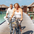 Happy mature couple enjoying cycle ride - Stock Photo