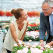 Royalty-Free Stock Photo: Choose a flower for any occasion