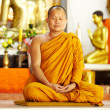 Meditating monk in a sacred shrine - 